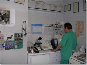 seccion_clinica_1